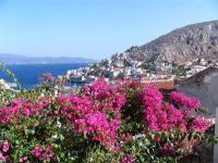 31島目              ギリシャ共和国 イドラ島