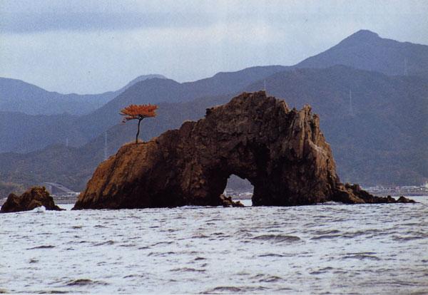 日本の島再発見_山口県_萩諸島_青海島_仙崎八景花津浦