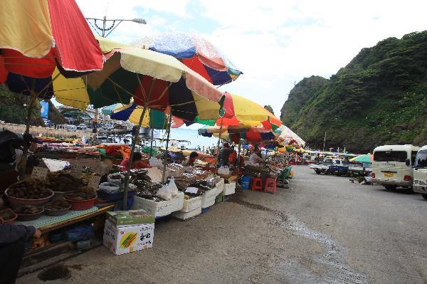 地球の島めぐり_韓国_鬱陵島_港の土産物店
