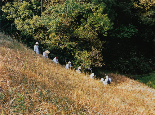 日本の島再発見_愛媛県_越智諸島_伊予大島_道なき道を行く巡礼たち