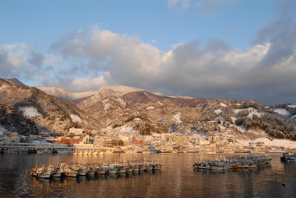 地球の島めぐり_韓国_鬱陵島_写真提供-文化観光課
