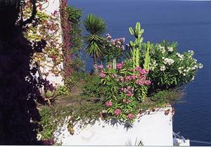 タオルミーナのイオニア海