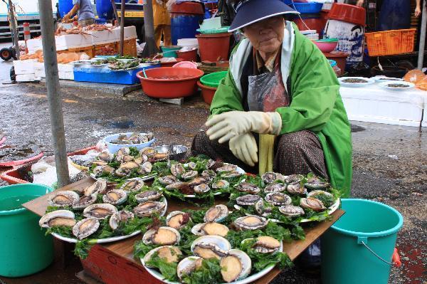 地球の島めぐり_韓国_鬱陵島_浦項の市場見学