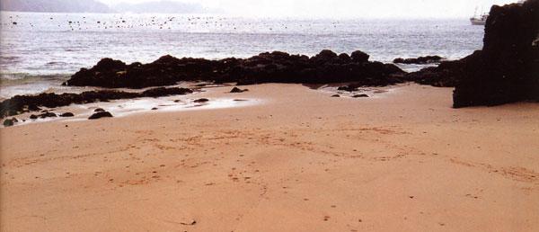 日本の島再発見_宮城県_大島_十八鳴浜(くぐなりはま)