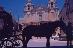マルタ市内