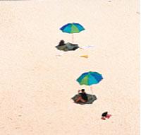 日本の島再発見_小笠原諸島 南島の砂浜