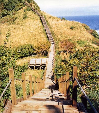 日本の島再発見_新潟県_粟島_粟島の八幡鼻