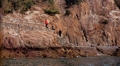 日本の島再発見_広島県_仙酔島_海岸沿いに続く遊歩道