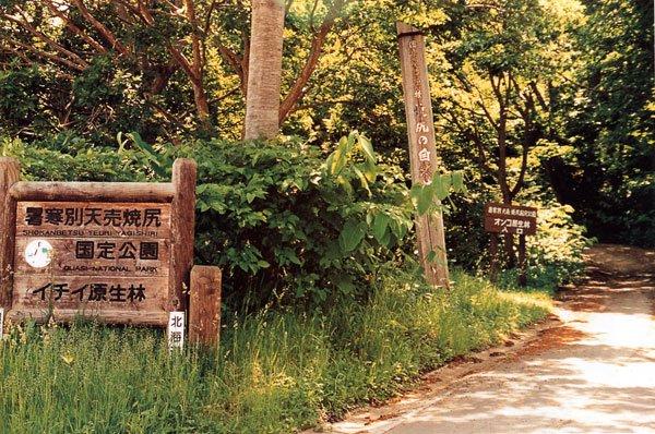 日本の島再発見_北海道_焼尻島_守られる焼尻島の自然