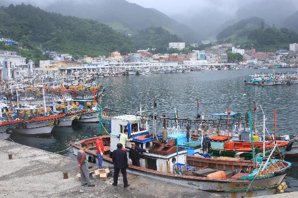 地球の島めぐり_韓国_鬱陵島_チョドン港に停泊するイカ釣り船