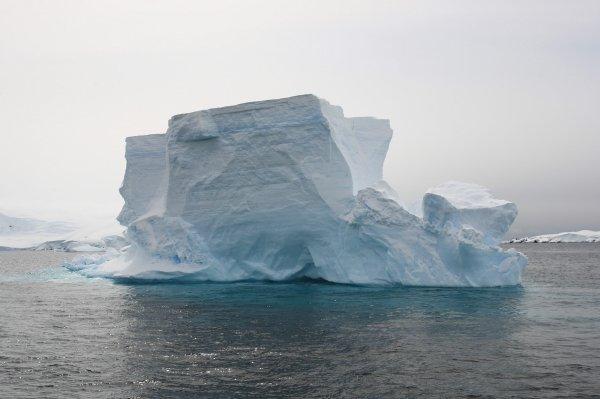 南極写真5