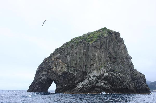 地球の島めぐり_韓国_鬱陵島_像石