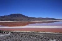 南米ボリビア 赤い湖・コロラダ湖 標高4000m