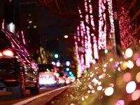 OSAKA 光のルネサンス&御堂筋