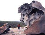 オーストラリア カンガルー島